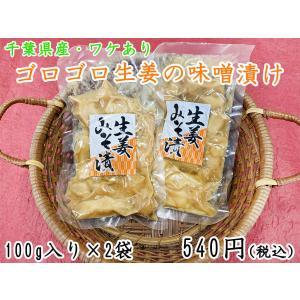 ゴロゴロ生姜の味噌漬100g×2袋  国産 ワケあり 漬物 味噌漬け 生姜 製造元直送 sawatsuke