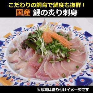 国産 鯉のあぶり刺身100g×3 コモリ食品 お中元のし対応可 sawayasouhonten