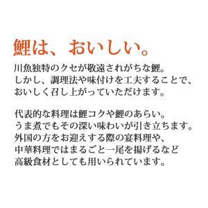 国産 鯉のあぶり刺身100g×3 コモリ食品 お中元のし対応可 sawayasouhonten 05
