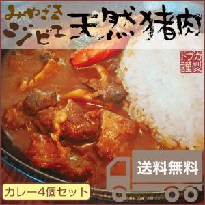 みやざきジビエ 天然猪カレー 4個セット お中元・残暑のし対応可|sawayasouhonten