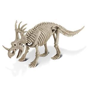 恐竜発掘キット スティラコサウルス|sazanamisp