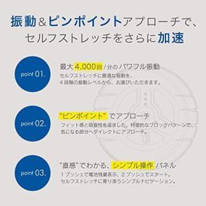 ドクターエア 3Dコンディショニングボール CB-01|sazanamisp