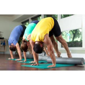バランスボディ(Balanced Body)マジックローラー ストレッチポール ヨガポール 縦90cm 横15cm (クラウドグレー)|sazanamisp