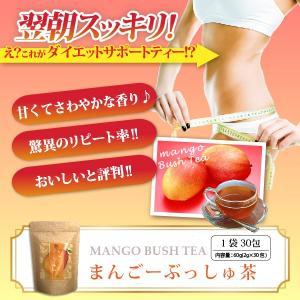 ダイエット 茶 キャンドルブッシュ マンゴー 紅茶 30包 送料無料