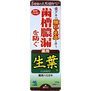 小林製薬 薬用歯みがき 生葉(100g) 歯槽膿漏を防ぐ はみがき粉