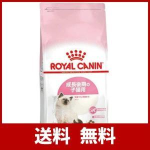 ロイヤルカナン FHN キトン 子猫用 2kg|scoray-buyshop