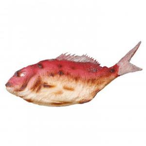 日本職人が作る  食品サンプル 祝い鯛 IP-380/職人がつくったおおきな鯛の塩焼き/玩具|scratch