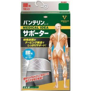 興和(コーワ) バンテリンコーワサポーター 腰用・男女兼用 シャイニンググレー/クロスネットテーピング構造が腰の不安感を軽減。/お悩み scratch