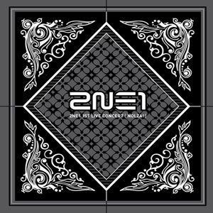 2NE1 トゥエニーワン 2011 2NE1 1st Liv...