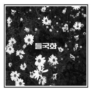 トゥルグックァ 野菊 トゥルグクファ 2CD 韓国盤|scriptv
