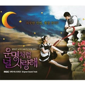 運命のように君を愛してる OST CD 韓国盤