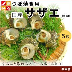 サザエ 国産 海鮮 BBQ 食材 5粒 seafoodhonpo88