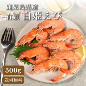 エビ ブラックタイガー 殻付き 17〜21尾 seafoodhonpo88