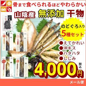 干物 詰め合わせ 骨まで食べられる 無添加 ひもの 5種 セット ハタハタ 沖 キス エテ カレイ  シジミ のどぐろ 食品 送料無料 非常食|seafoodhonpo88