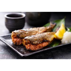 いわし明太 30尾 seafoodpro