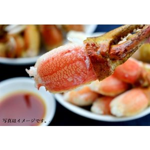 カニ爪(ズワイ)1kg 31/35 2L 解凍してそのままが一番! フライ キャンプ|seafoodpro