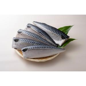 さばフィーレ(骨取り) 加熱調理用 無塩  5kg/2 seafoodpro