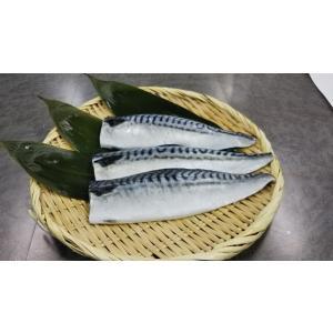 塩サバフィーレ30枚入×2 脂のり最高! seafoodpro