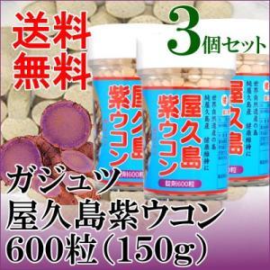 屋久島 紫ウコン(ガジュツ)粒×3|seagull
