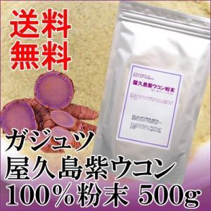 屋久島 紫ウコン(ガジュツ)粉末500g|seagull