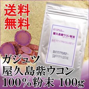 $屋久島 紫ウコン(ガジュツ)粉末100g|seagull