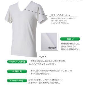 (パケット便送料無料)phiten(ファイテン)RAKUシャツ メンズインナー V首半袖・アクアチタ...