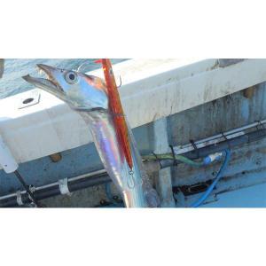 ロングジグ/120g/メタルジグ/ジグ/ヒラマサ/ブリ|seas|08