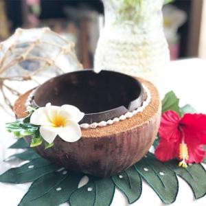 ハワイアンココナッツのおしゃれな入れ物 プルメリア seashells-zakka
