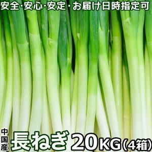 長葱 ながねぎ 白ネギ Lサイズ 5kg/箱x4箱セット 中国産 業務用長ネギ 品質がとっても良い ...