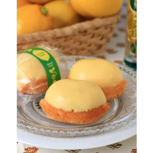 さわやかレモンケーキ(1個) *国産レモン・国産小麦|secondhouse-cw