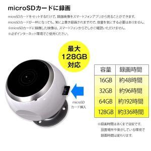 防犯カメラ ネットワークカメラ VR 360° ワイヤレス クラウド|secu|11