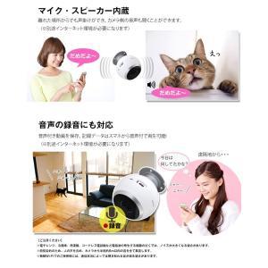 防犯カメラ ネットワークカメラ VR 360° ワイヤレス クラウド|secu|10