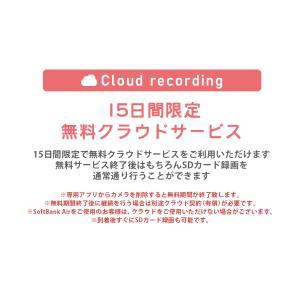 ペットモニター スマホ 見守りカメラ 首振り ポチカメ|secu|17