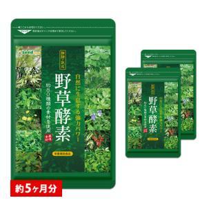 酵素 野草酵素 約5ヵ月分 サプリ ダイエットサプリ 簡単 ダイエット 野菜 野草 EnzymeDiet