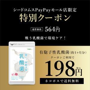 サプリ サプリメント 乳酸菌 サプリ 有胞子性乳酸菌ソフトカプセル 約1ヵ月分 ダイエット