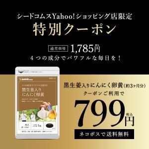 サプリ サプリメント にんにく卵黄 黒生姜入り にんにく卵黄+山人参カプセル 約3ヵ月分