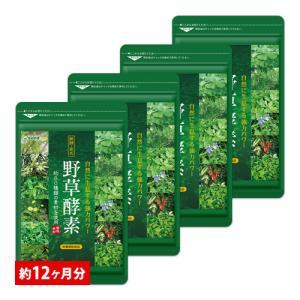 新春セール クーポンで2020円 サプリ サプリメント 生酵素 酵素 野草酵素 BIGサイズ約1年分 サプリ ダイエットサプリ 簡単 ダイエット
