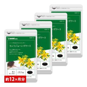 サプリ サプリメント セントジョーンズワート BIGサイズ約1年分 サプリ サプリメント ダイエット