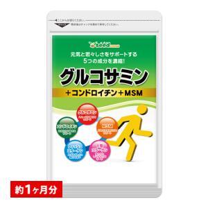 サプリ サプリメント 2型コラーゲン配合グルコサミン コンドロイチン MSM 約1ヵ月分 グルコサミ...