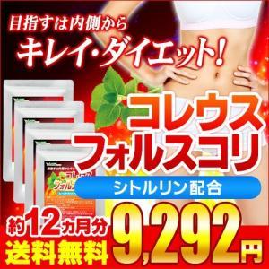 サプリ サプリメント コレウスフォルスコリ BIGサイズ約1年分 サプリ サプリメント ダイエット、健康グッズ seedcoms