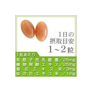 サプリ サプリメント 乳酸菌 サプリ 有胞子性乳酸菌ソフトカプセル 約3ヵ月分 ダイエット|seedcoms|02