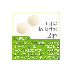 コエンザイムQ10 アルファリポ酸 L-カルニチン+葉酸 約1ヵ月分 お試しセール限定価格 サプリ サプリメント seedcoms 02