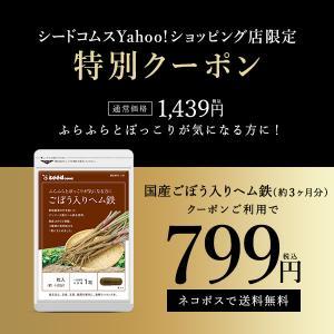 サプリ サプリメント 国産ごぼう入りヘム鉄 〜葉酸配合〜 約3ヵ月分 ダイエット、健康グッズ