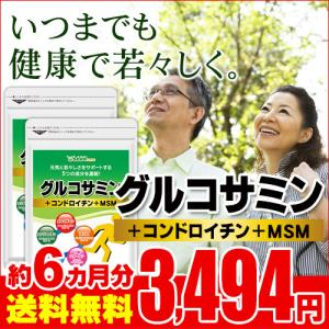 サプリ サプリメント 2型コラーゲン配合グルコサミン コンドロイチン MSM 約6ヵ月分 お徳用半年...