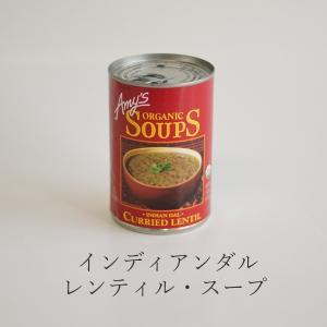 エイミーズ インディアンダルレンティル・スープ 411g アメリカ産 エスニック ウラド豆 ムング豆 スパイシー 保存料不使用 缶詰 回復食|seedleaf