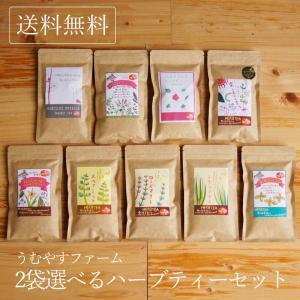 ハーブティー 宮古島 うむやすファーム 9種類から2袋選べるハーブティーセット ノンカフェイン 沖縄 自然栽培 無農薬 プチギフト 送料無料の画像