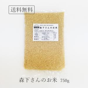玄米 無農薬 森下さんのお米 750g 熊本県産 ヒノヒカリ 完全無化学肥料米 お試し 森下農園 送料無料|seedleaf