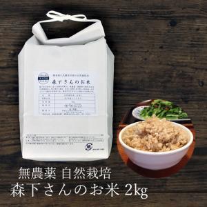 玄米 無農薬 森下さんのお米 2kg 熊本県産 自然栽培|seedleaf