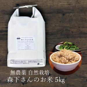 玄米 無農薬 森下さんのお米 5kg 熊本県産 自然栽培|seedleaf