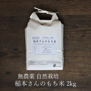 稲本さんのもち米 2kg 古代米 熊本県産 自然栽培 無農薬 無肥料|seedleaf